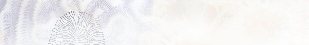 Headerbild Kontakt, Impressum, Datenschutz grau